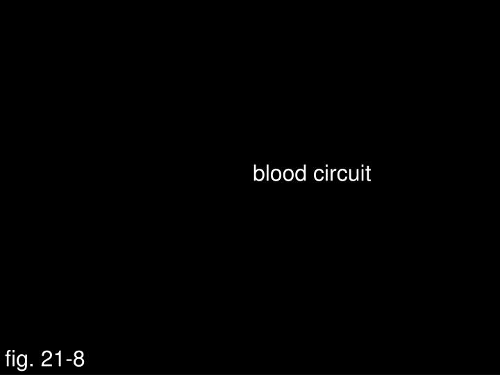 blood circuit
