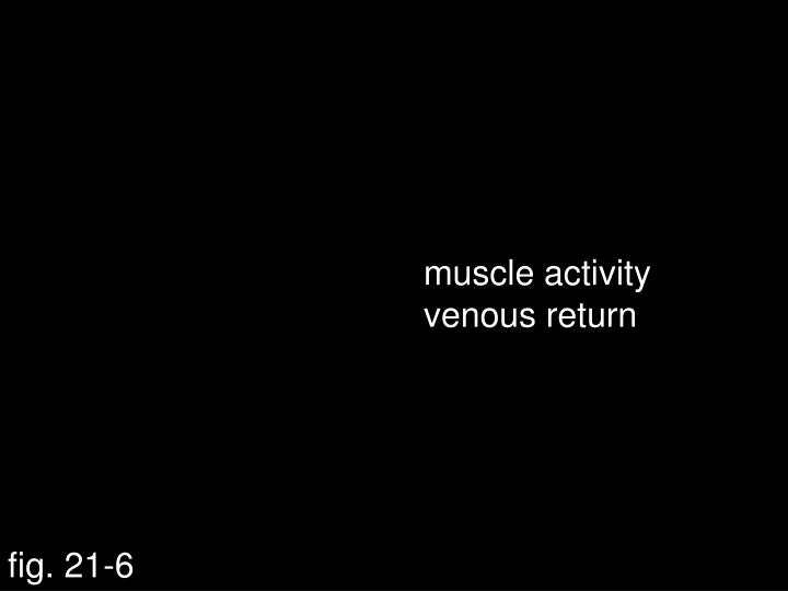 muscle activity