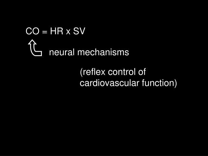 CO = HR x SV