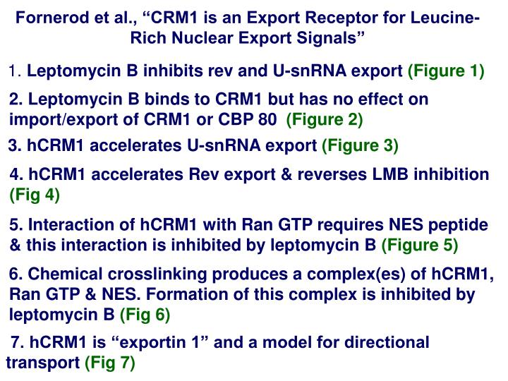 "Fornerod et al., ""CRM1 is an Export Receptor for Leucine-Rich Nuclear Export Signals"""