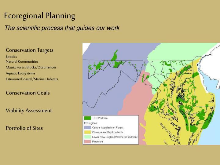 Ecoregional Planning