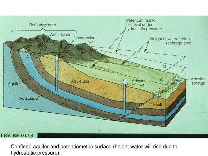 Confined aquifer and potentiometric surface (height water will rise due to hydrostatic pressure).