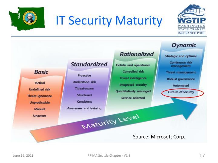IT Security Maturity