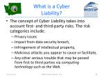 what is a cyber liability