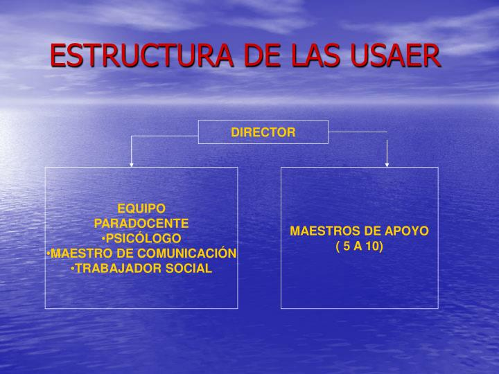 ESTRUCTURA DE LAS USAER