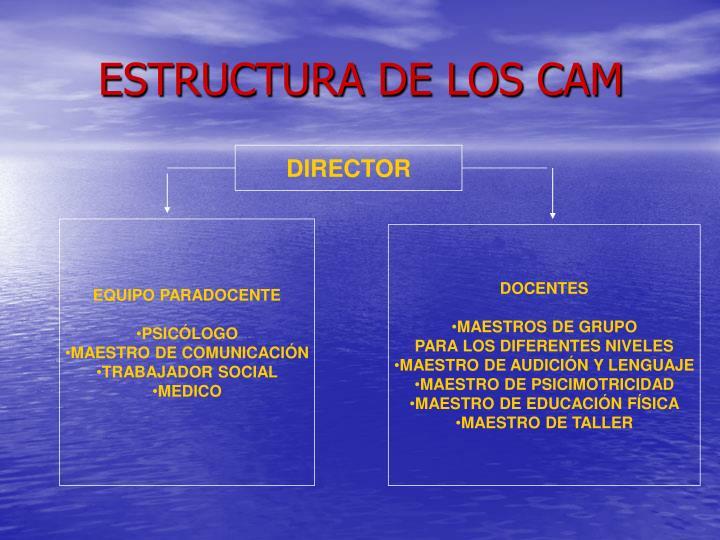 ESTRUCTURA DE LOS CAM
