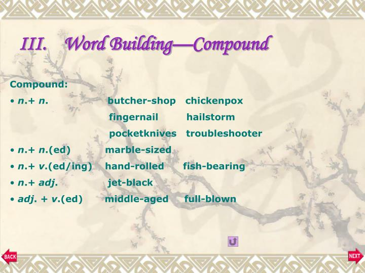 Word Building—Compound