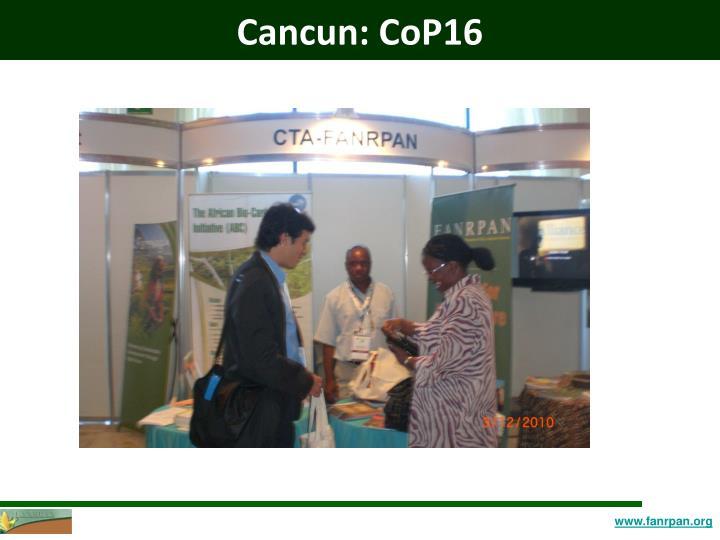 Cancun: CoP16