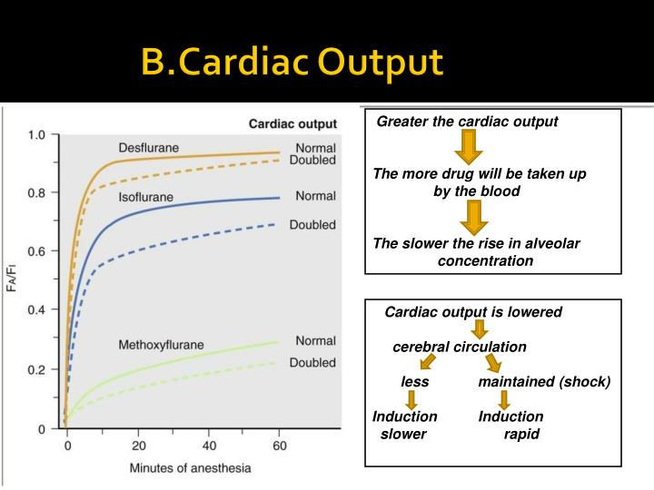 B.Cardiac