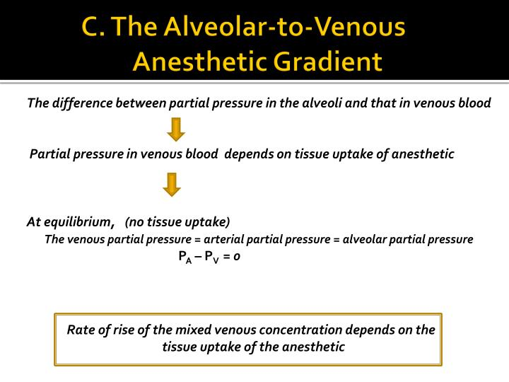 C. The Alveolar-to-Venous                Anesthetic Gradient