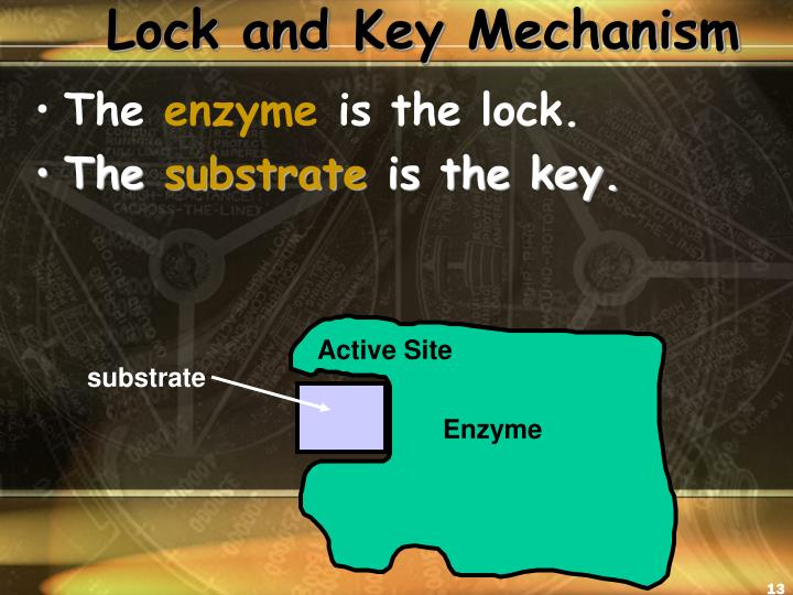 Lock and Key Mechanism