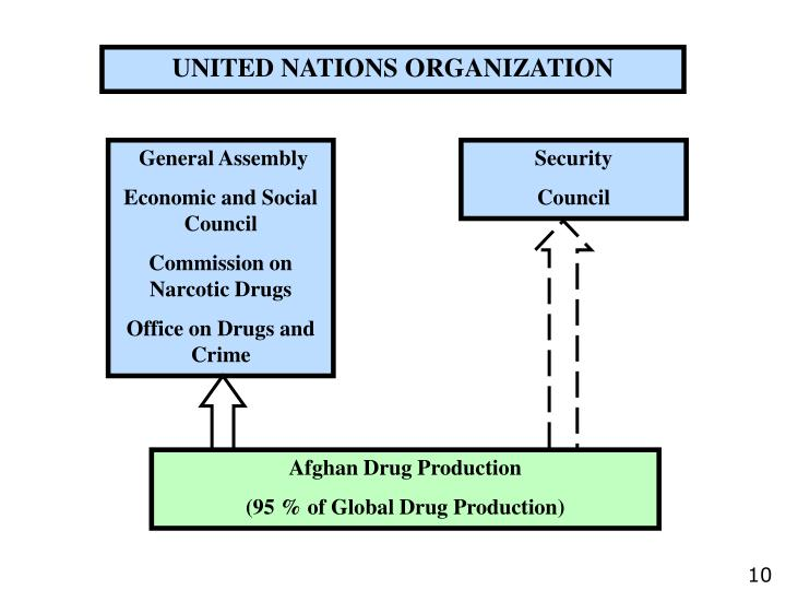 UNITED NATIONS ORGANIZATION