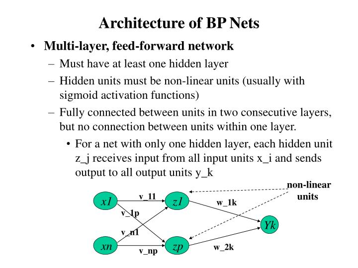 Architecture of bp nets