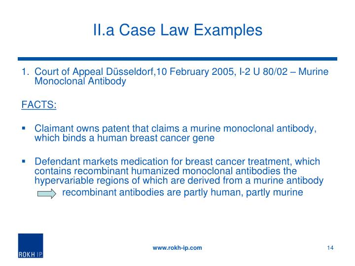II.a Case Law Examples