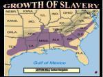 map cotton belt