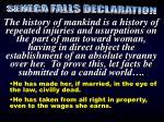 seneca falls declaration1