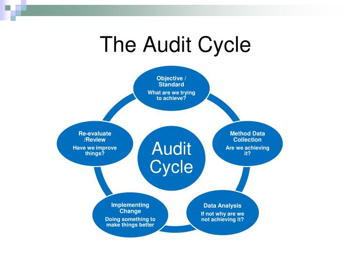 The Audit Cycle