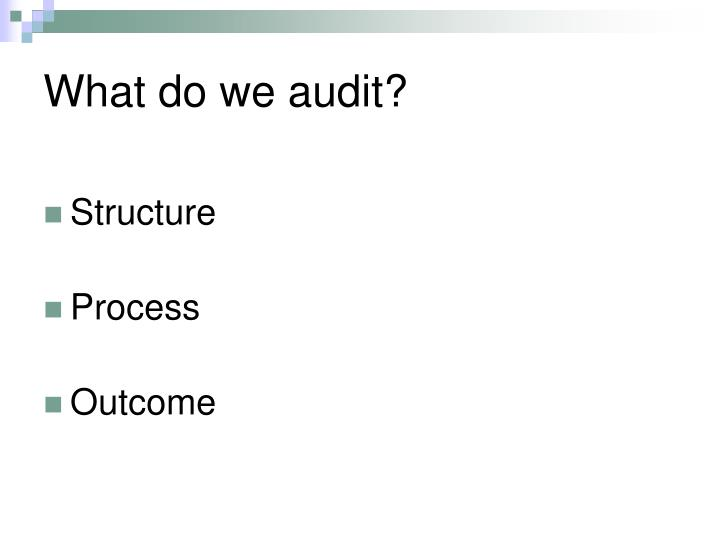 What do we audit?
