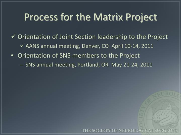 Process for the Matrix Project
