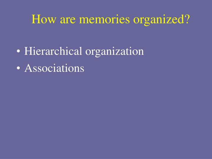 How are memories organized?