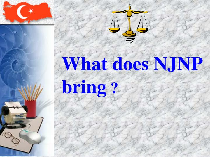 What does NJNP bring