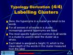 typology derivation 4 4 labelling clusters