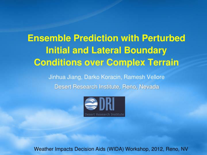 Ensemble prediction with perturbed initial and lateral boundary conditions over complex terrain