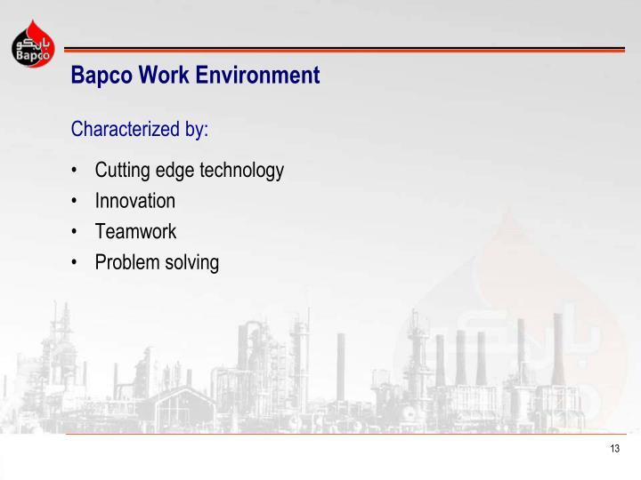 Bapco Work Environment