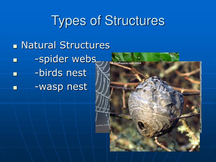 Types of structures