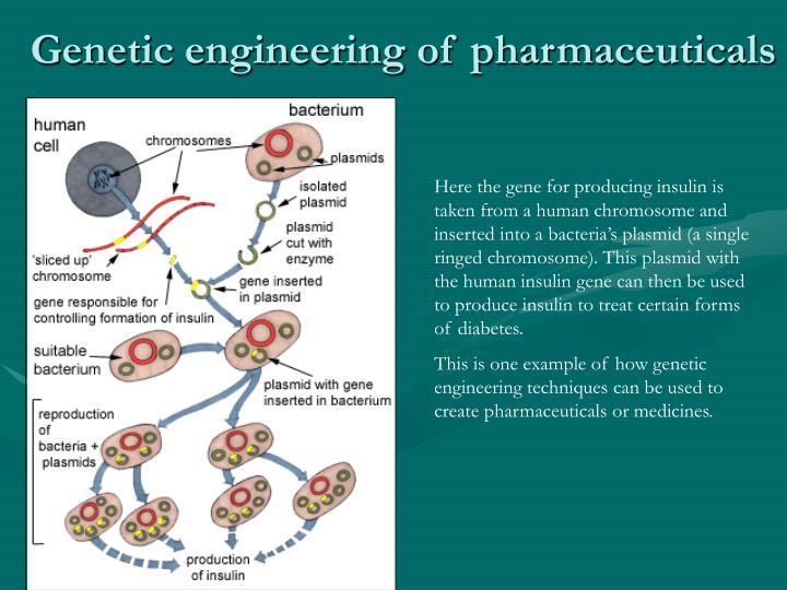 Genetic engineering of pharmaceuticals