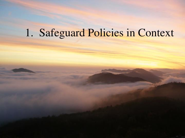 1.  Safeguard Policies in Context