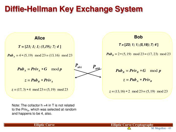 Diffie-Hellman Key Exchange System