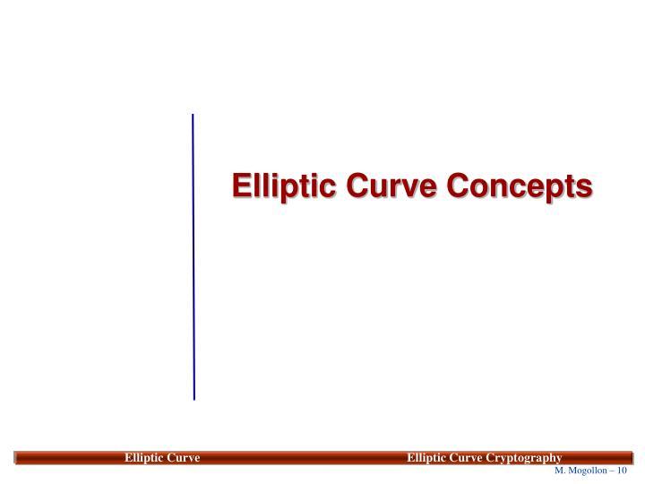 Elliptic Curve Concepts