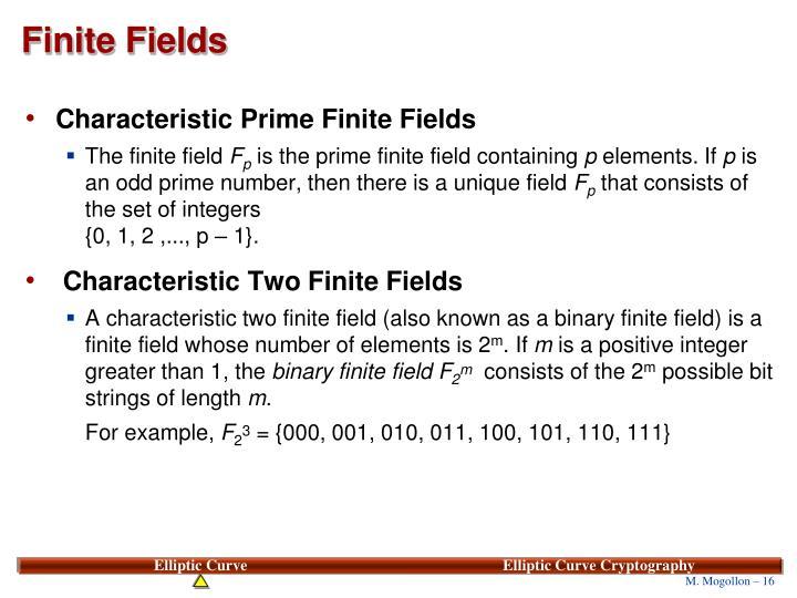 Finite Fields