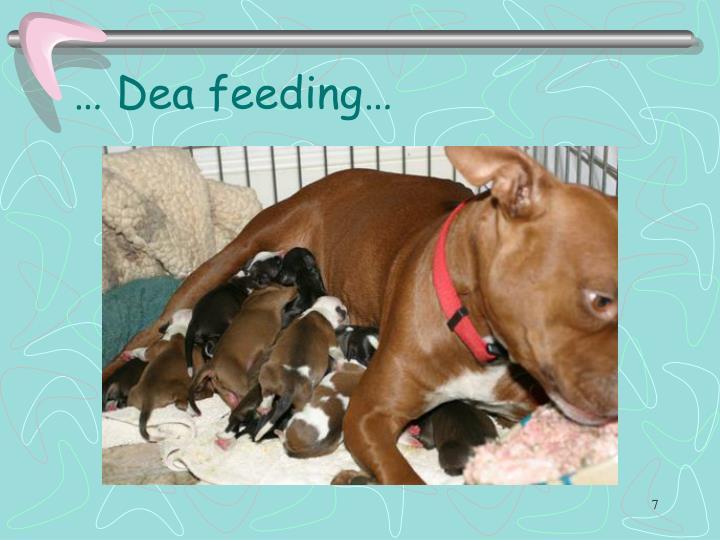 … Dea feeding…