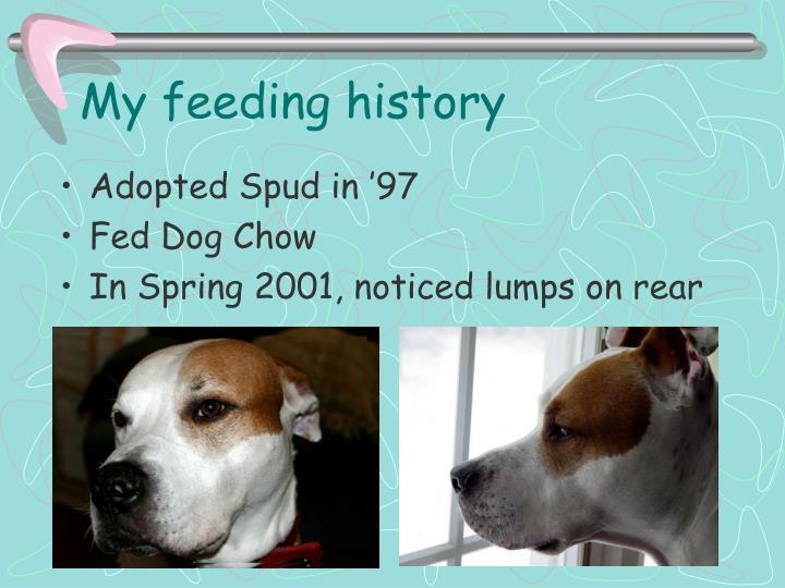 My feeding history