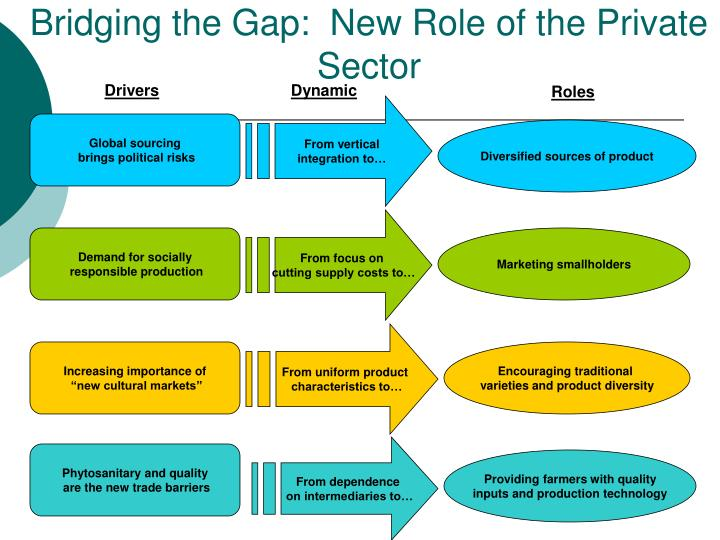 Bridging the Gap:  New Role of the Private Sector
