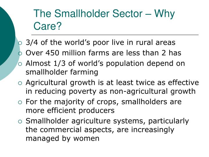 The Smallholder Sector – Why Care?