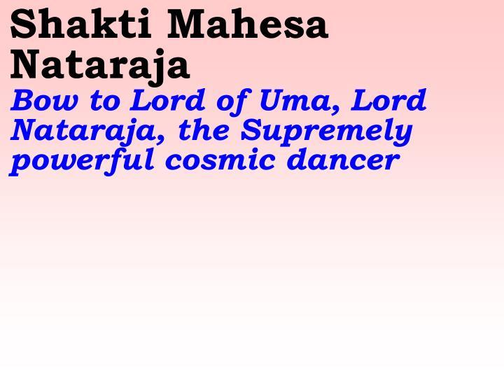 Shakti Mahesa Nataraja