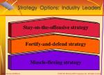 strategy options industry leaders