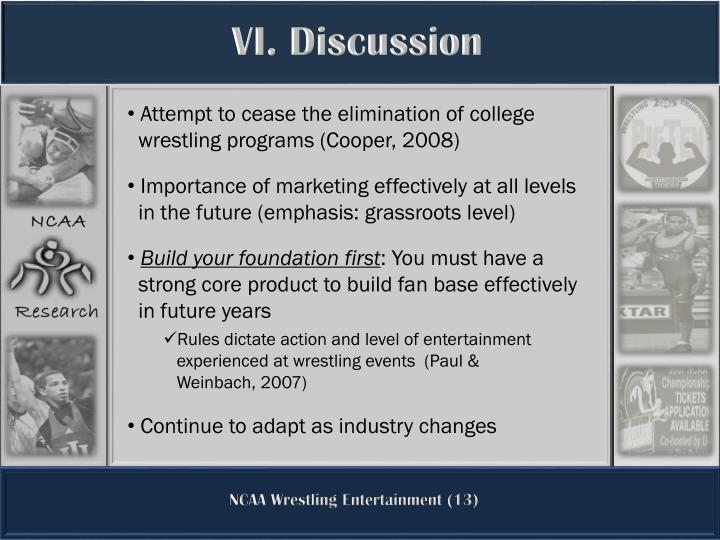 VI. Discussion