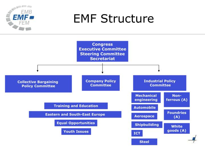 EMF Structure