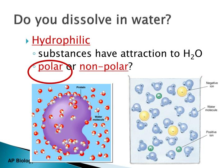 Do you dissolve in water?