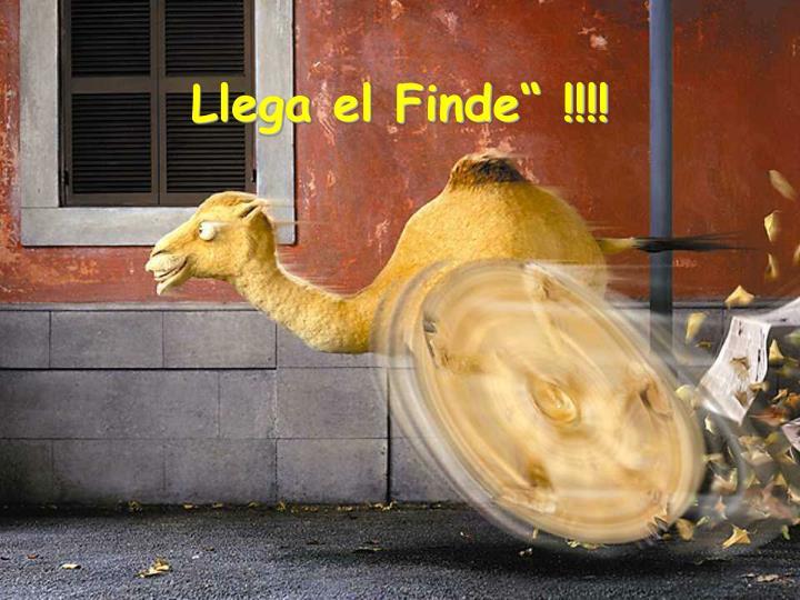 """Llega el Finde"""" !!!!"""