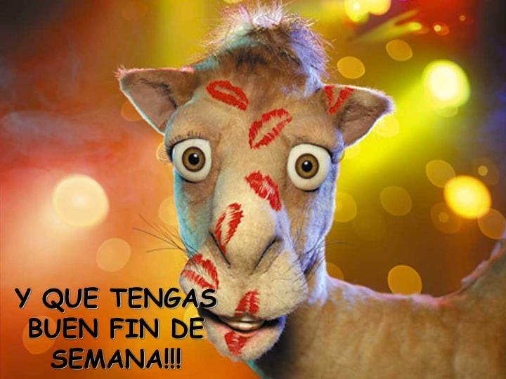 Y QUE TENGAS BUEN FIN DE SEMANA!!!