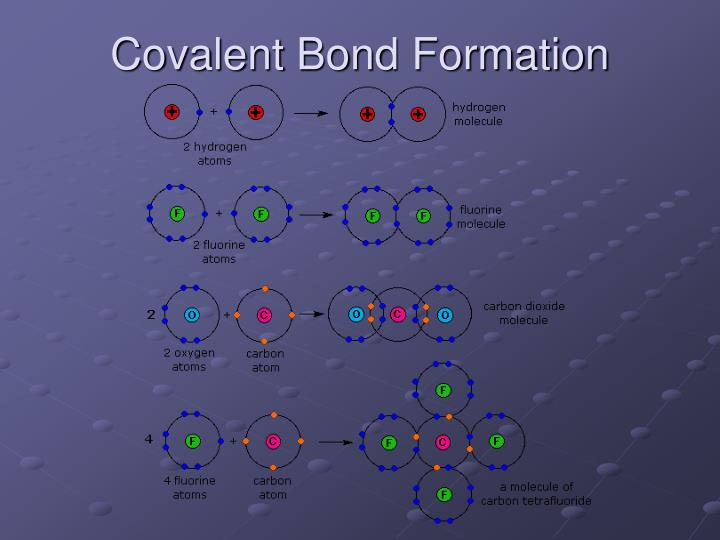 Covalent Bond Formation