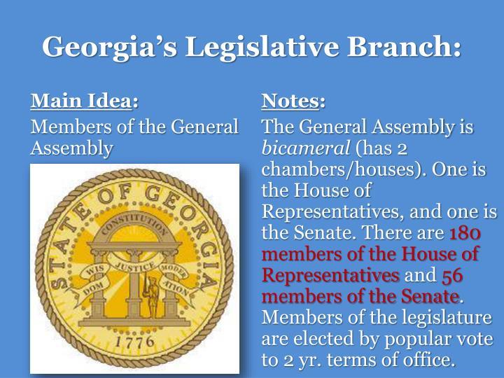 Georgia's Legislative Branch: