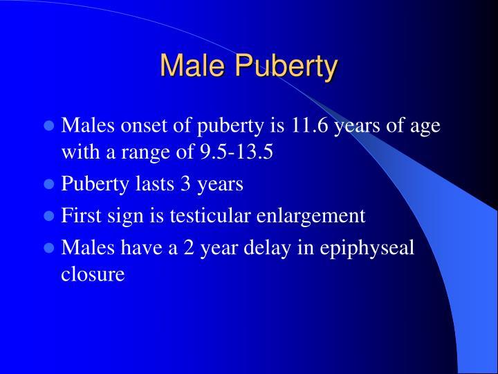 Male Puberty
