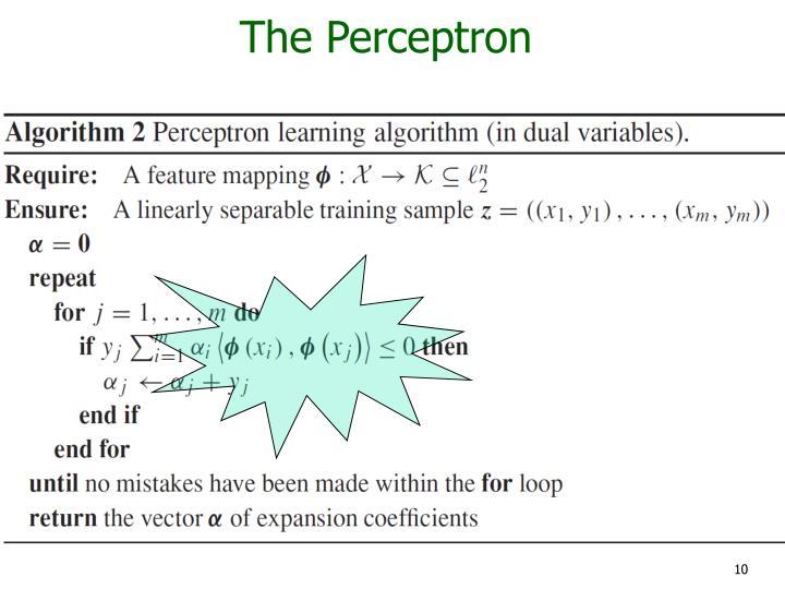 The Perceptron