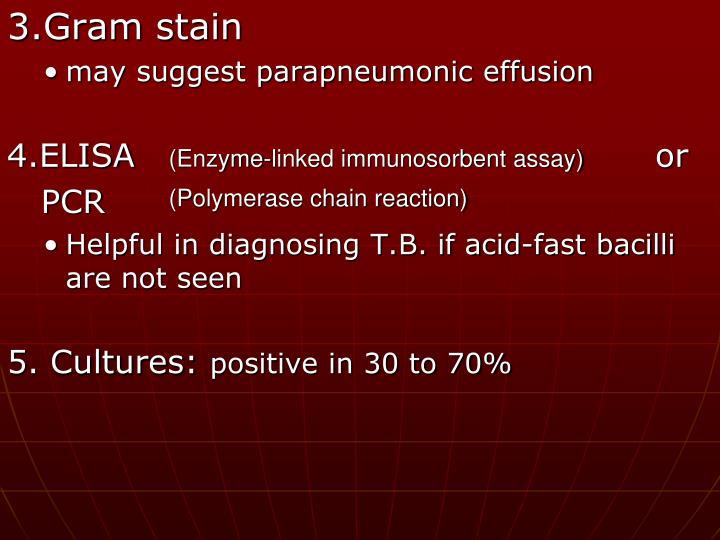 3.Gram stain